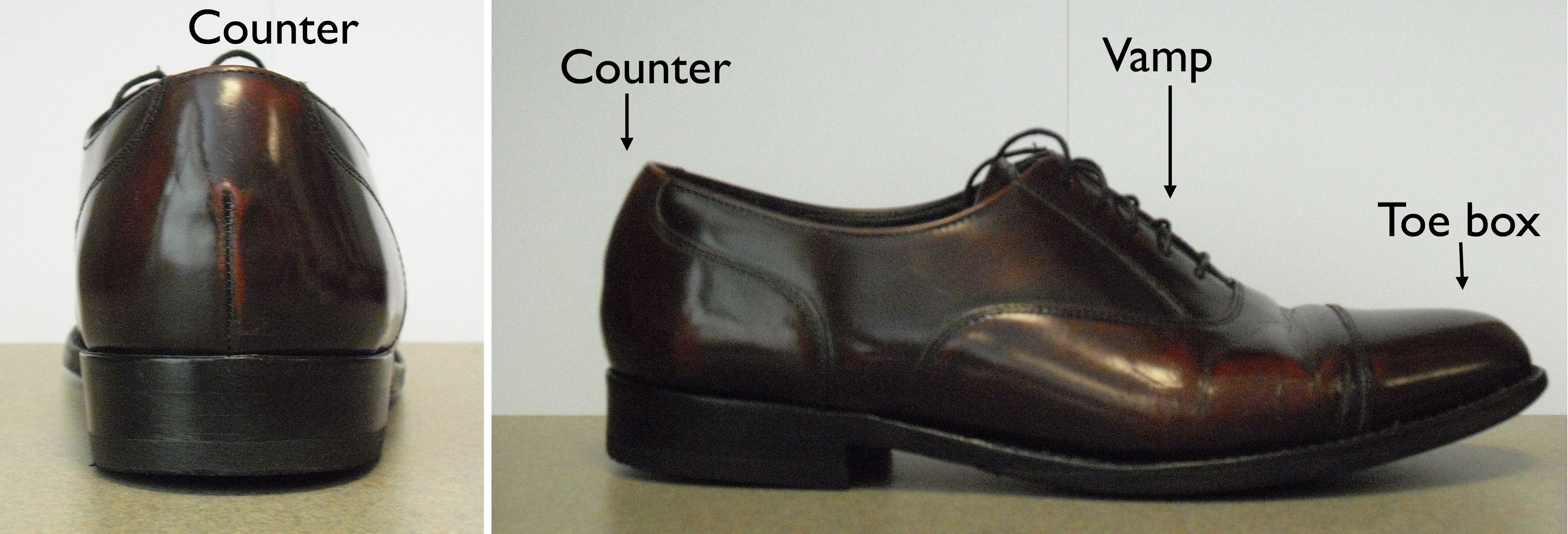 The parts of a shoe