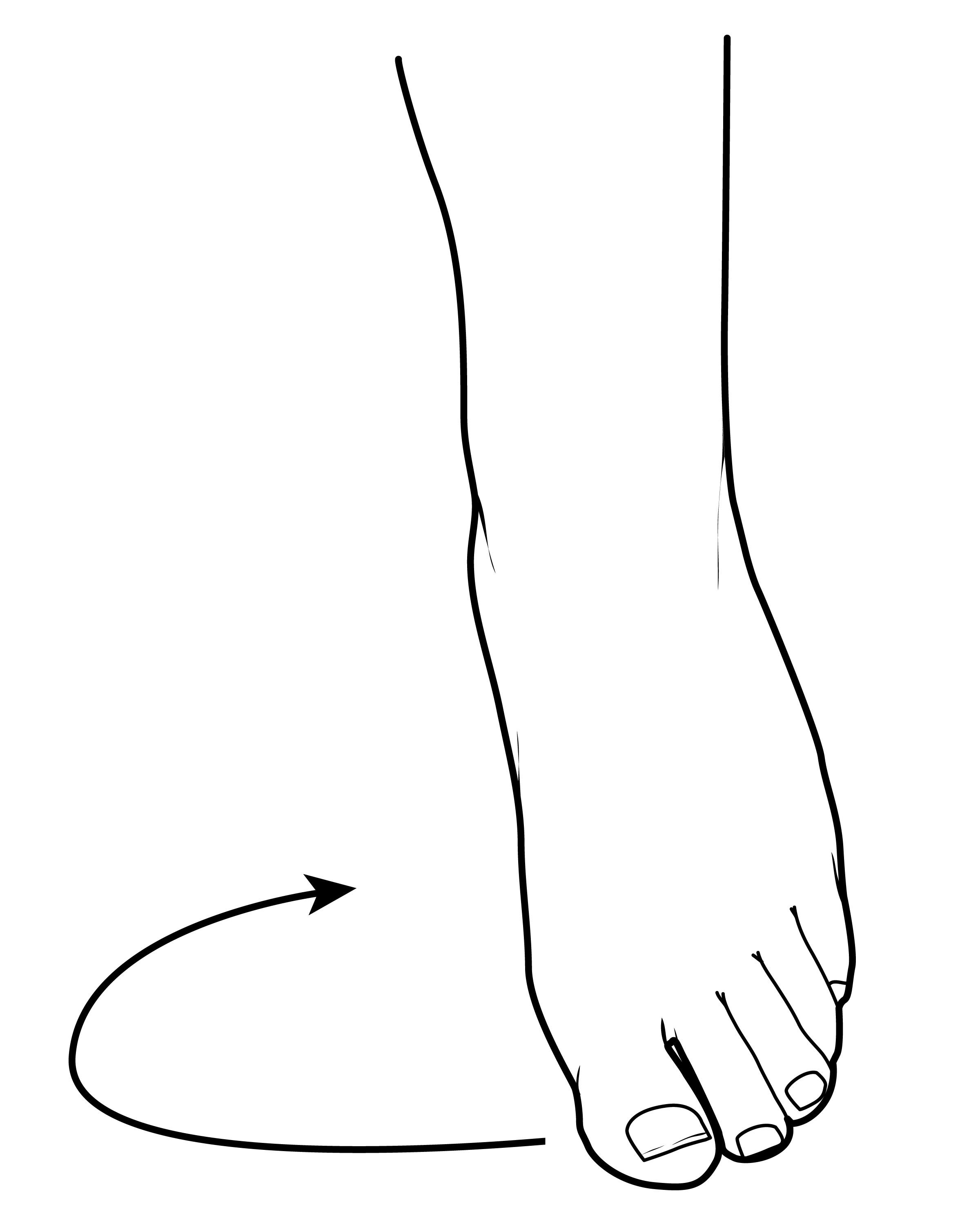 Ankle range of motion