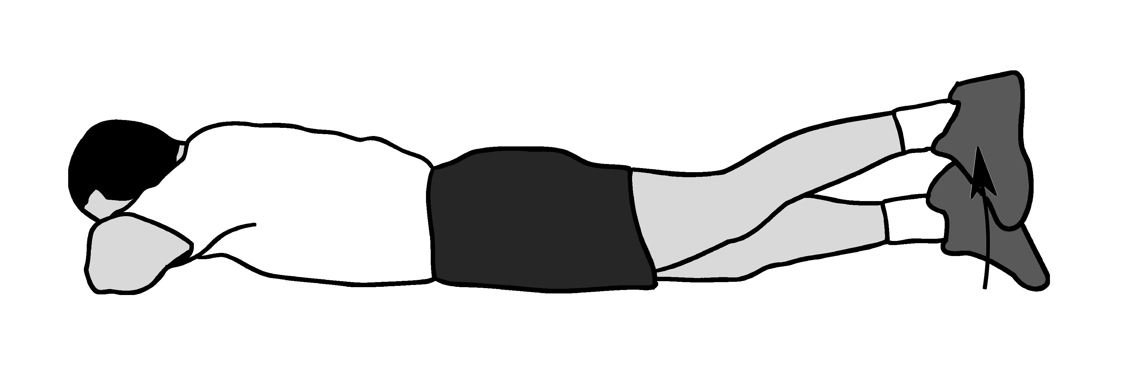 Straight-leg raises (prone)