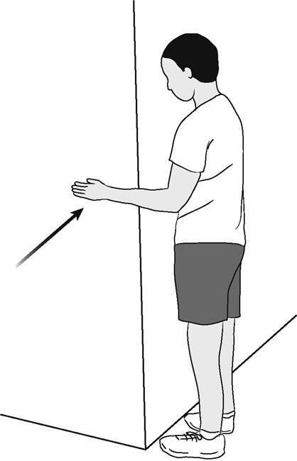 Illustration of shoulder internal rotation (isometric)
