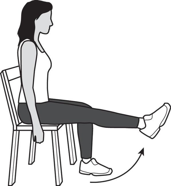 Los ejercicios de extensión de piernas ayudan a fortalecer y estirar los cuádriceps, los músculos en la parte delantera del muslo.